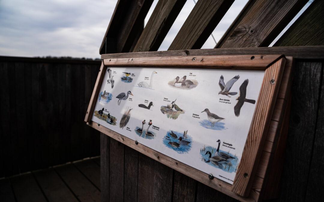 Fira friluftslivets dag i Gredelby hagar | Biotopia